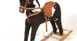 Jakie konie wyróżniamy?