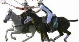 Polocrosse dyscyplina jeździecka