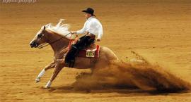 Reinning - konkurencja dokładności w stylu westernowym