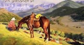 Konie przy pracy
