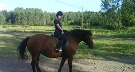 jak dopasować sprzęt do konia i jeźdźca
