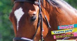 Magazyn Klub Jeździecki - piąty numer w kioskach