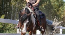 Mistrzyni i trenerka stylu western - Ewelina Zoń