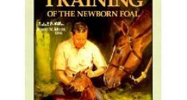 Robert M. Miller uczył rozumieć konie