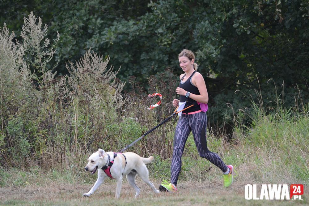 Bieganie, sportowo psami czterech łapach [ZDJĘCIA] - zdjęcie, fotografia