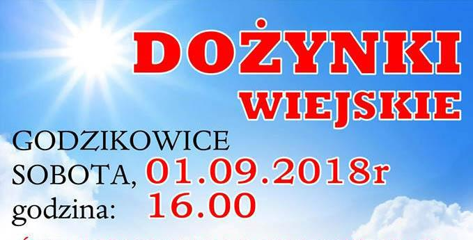 Gmina Oława, Dożynki wiejskie Godzikowicach - zdjęcie, fotografia