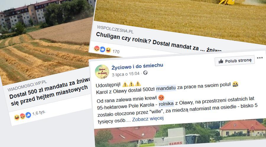 Rolnictwo, Rolnik Oławy ustach całej Polski - zdjęcie, fotografia