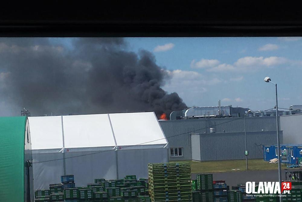 Pożary, Duży pożar fabryce Jelczu Laskowicach akcja straży pożarnej - zdjęcie, fotografia