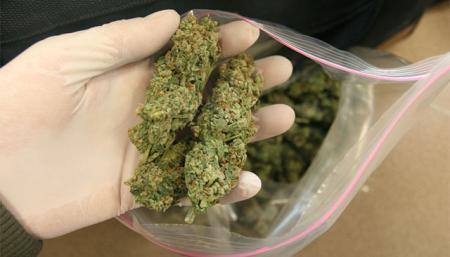 Kronika policyjna, Kontrolowali szukali narkotyków - zdjęcie, fotografia