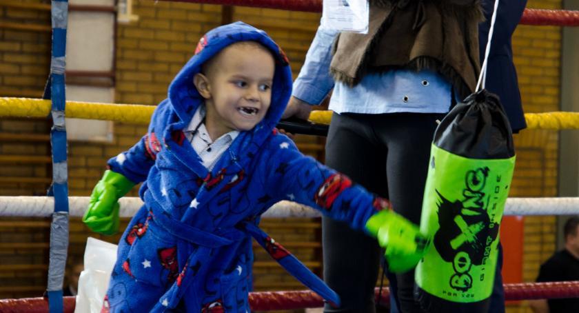 Boks, Boksowali Oktawiana małego wojownika - zdjęcie, fotografia