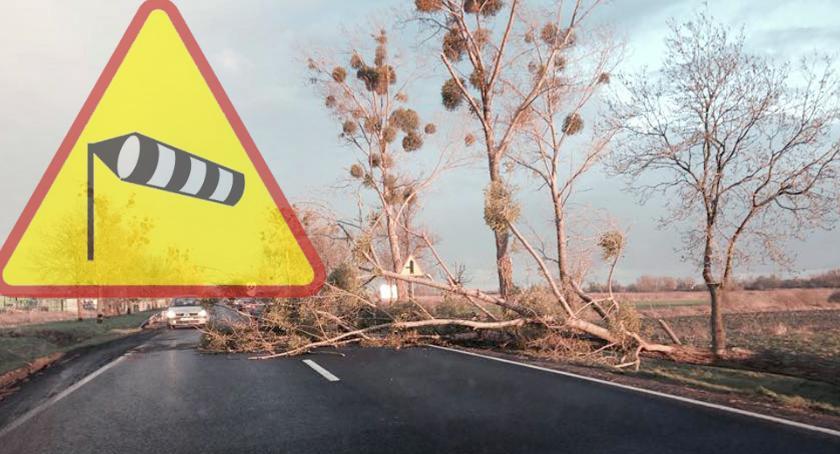 Komunikaty, Kolejne ostrzeżenie Spodziewane silne wiatry! - zdjęcie, fotografia