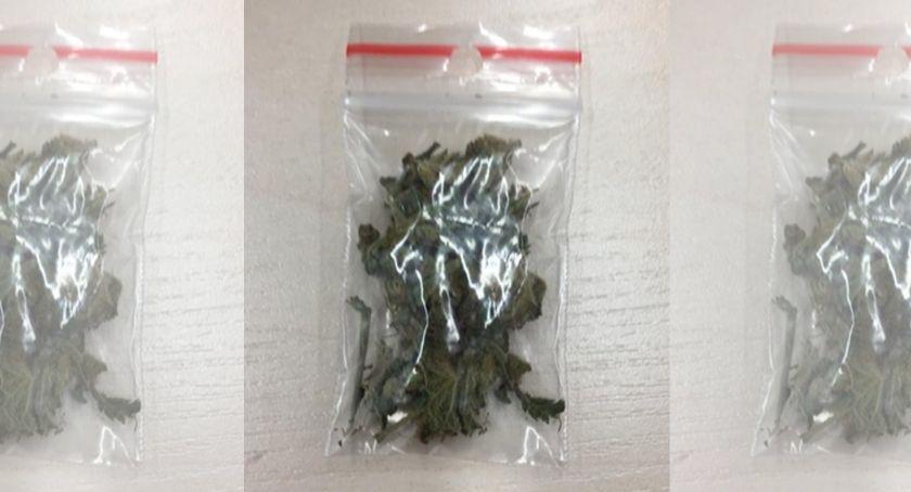 Kronika policyjna, plecaku miał słoik marihuaną - zdjęcie, fotografia