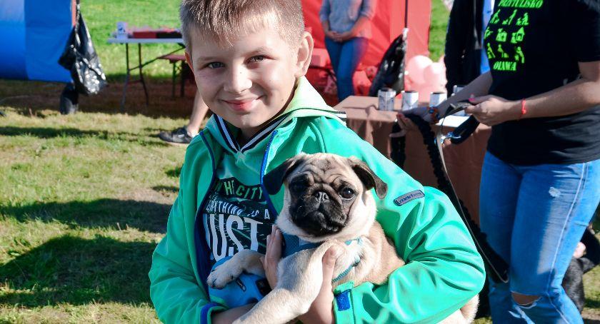 Mieszkańcy, Miłośnicy psów wspólnym pikniku - zdjęcie, fotografia