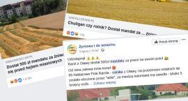 Rolnik z Oławy na ustach całej Polski