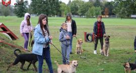 Piknik z psem i biegiem na czterech łapach
