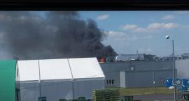 Duży pożar w fabryce w Jelczu-Laskowicach. Trwa akcja straży pożarnej