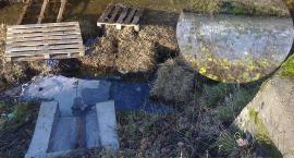 Dwa tygodnie po pożarze, wszystko trafiło do Odry