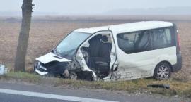 12 osób rannych w wypadku