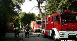 Pożar w Patio - zapalił się pochłaniacz