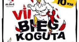 W niedzielę Bieg Koguta - ważne informacje