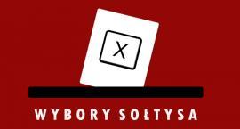 Wybory sołtysów i rad w Gminie Domaniów
