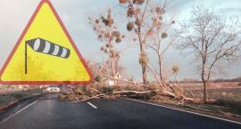 Kolejne ostrzeżenie IMGW. Spodziewane są silne wiatry!