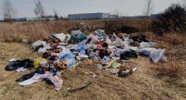 Jelcz-Laskowice: Sterta śmieci, w tym ważne dokumenty