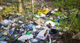 Dzikie śmietnisko straszy w Bystrzycy