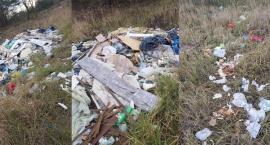 Bezkarnie, nadal wyrzucają śmieci do lasu