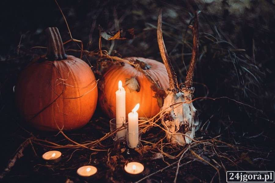Turystyka, Mroczny Wrocław edycja Halloween - zdjęcie, fotografia