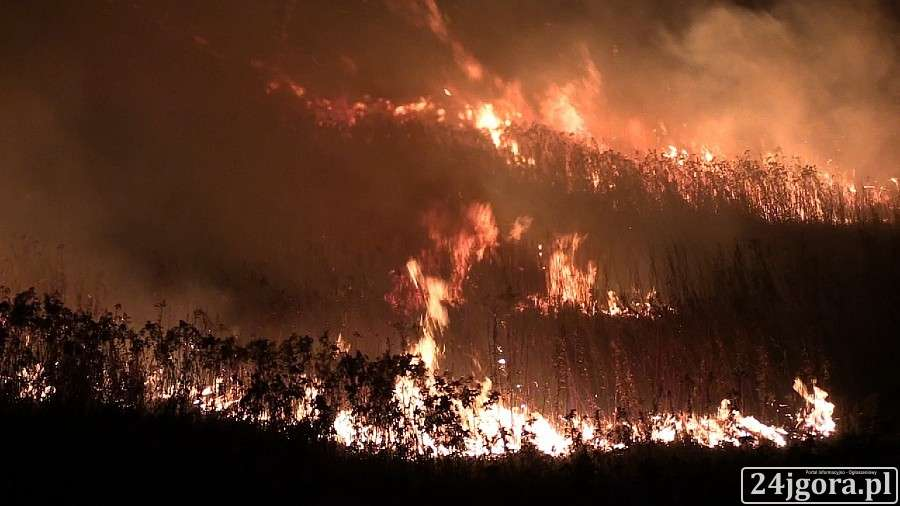 Pożary, Ogromny pożar cieplickich wałach - zdjęcie, fotografia