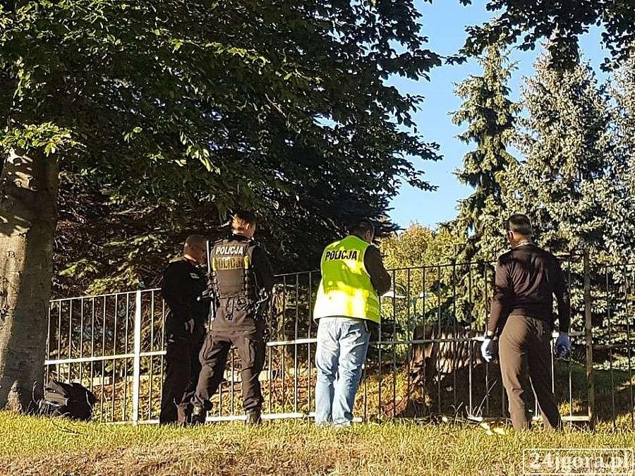 Kronika Kryminalna, Makabryczne odkrycie ulicy Sudeckiej - zdjęcie, fotografia