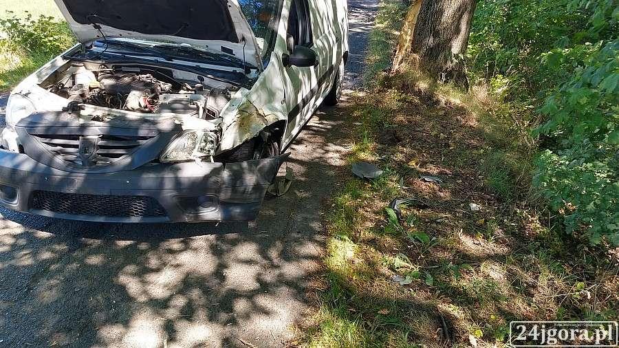 Wypadki drogowe, Rozbił Dacię przydrożnym drzewie - zdjęcie, fotografia