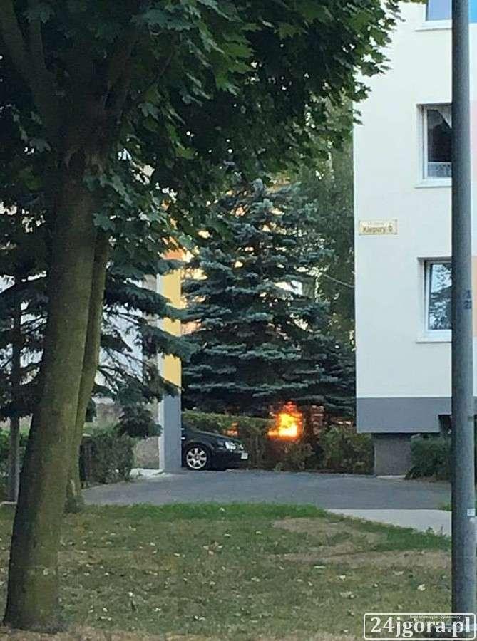 Pożary, Pożar śmietnika Kiepury - zdjęcie, fotografia