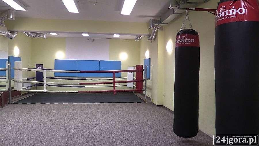 Boks, Fighters nową filią Karpaczu (VIDEO) - zdjęcie, fotografia