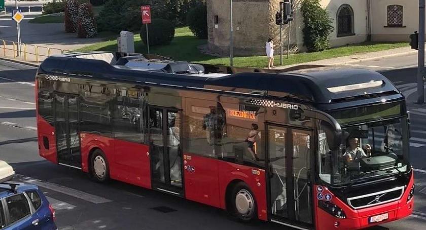 Komunikacja, Trwają prace poprawą czystości Jeleniej Górze - zdjęcie, fotografia