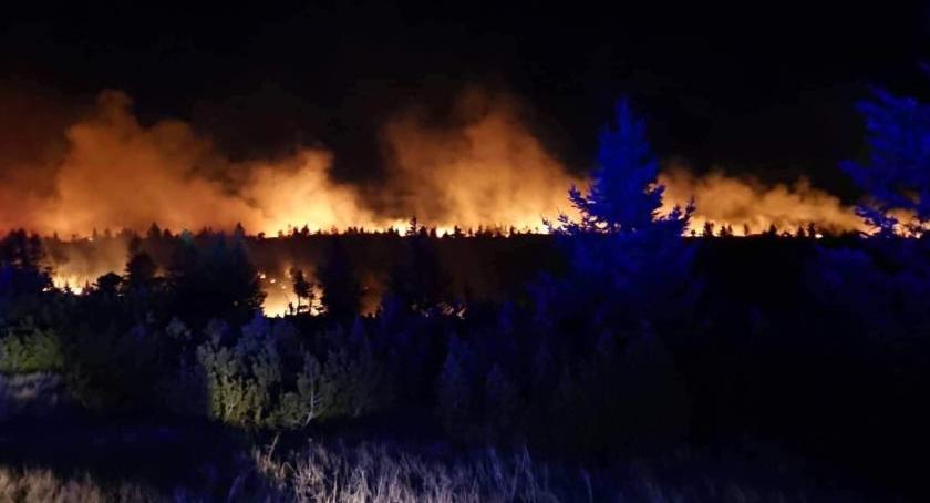 Pożary, Olbrzymi pożar Karkonoszach akcji gaśnicznej biorą udział czescy polscy strażacy - zdjęcie, fotografia