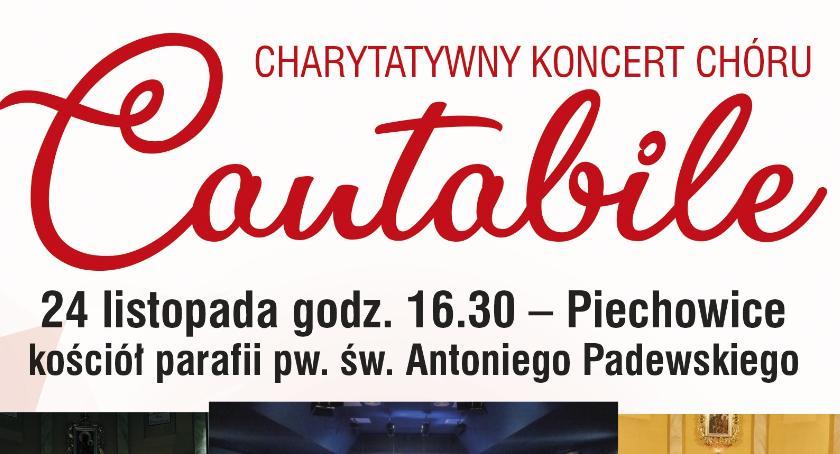 Koncerty, Chór Cantabile Piechowicach - zdjęcie, fotografia