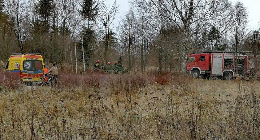 Z ostatniej chwili, Mężczyzna przygnieciony przez drzewo Trafił szpitala - zdjęcie, fotografia