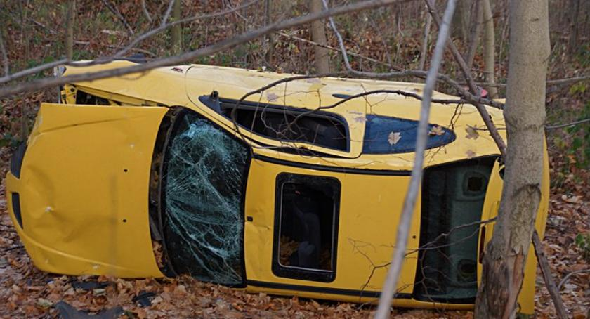 Absurdy, Samochód leży lesie trzech miesięcy - zdjęcie, fotografia