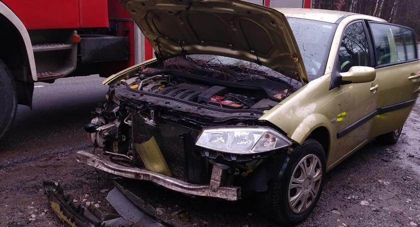 Wypadki drogowe, Próbowała uniknąć zderzenia sarną wypadła drogi - zdjęcie, fotografia