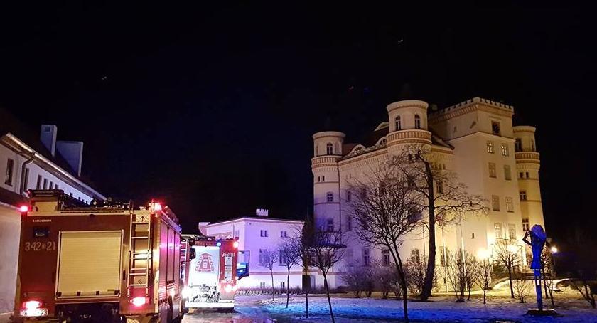 Pożary, Alarm Pałacu Wojanów Czujka wezwała straż pożarną - zdjęcie, fotografia