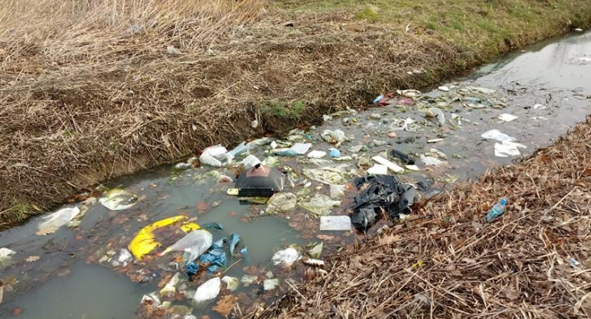Ludzie, Giełda tonie śmieciach - zdjęcie, fotografia