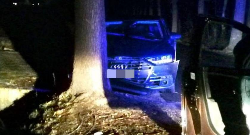 Wypadki drogowe, Próbował uniknąć zderzenia sarną uderzył drzewo - zdjęcie, fotografia