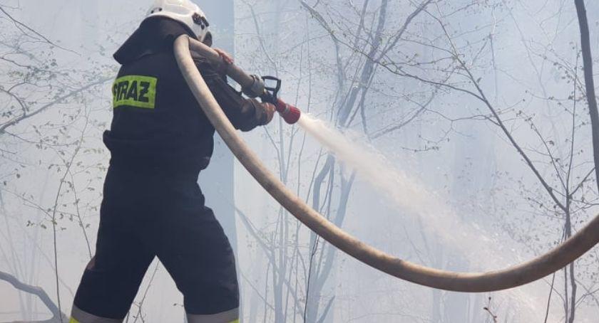 Pożar ściółki leśnej. Akcja strażaków.