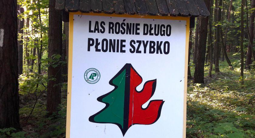 Ważne komunikaty, lasach susza - zdjęcie, fotografia