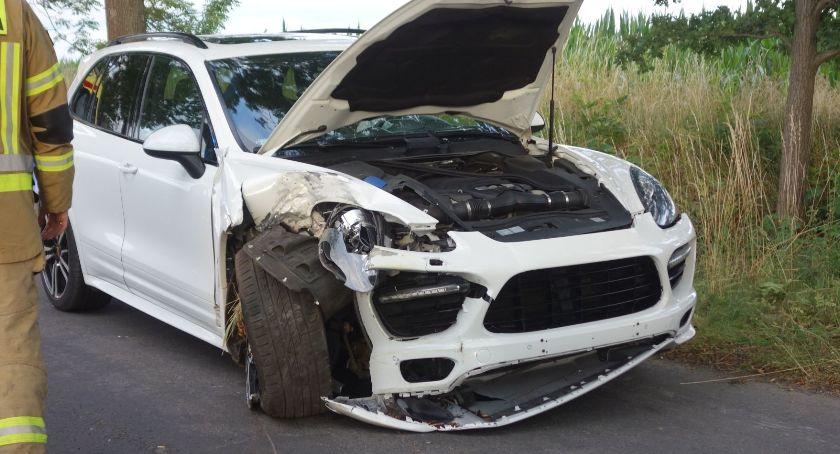 Wypadki drogowe, Przebiegające sarny zderzenie dwóch - zdjęcie, fotografia