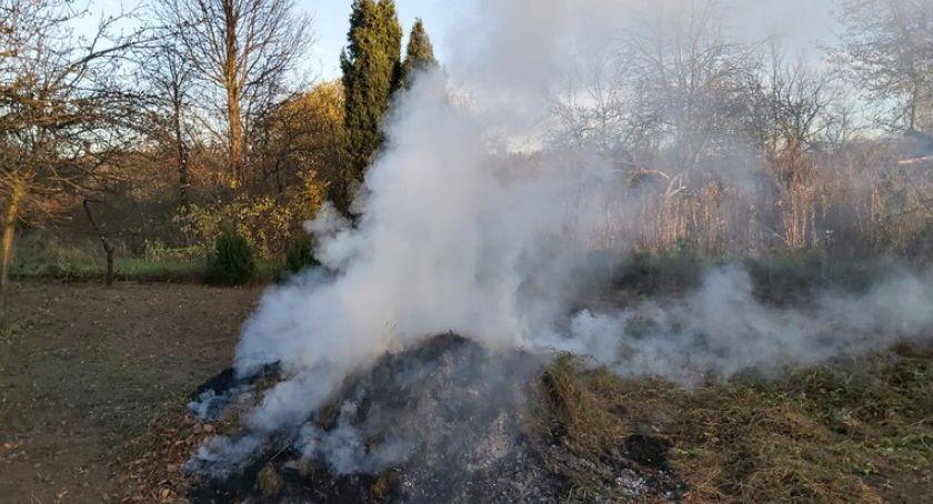 Dom i ogród, palenie odpadów roślinnych grozi mandat - zdjęcie, fotografia