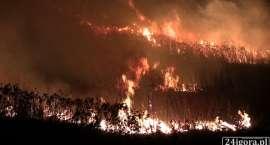 Ogromny pożar na cieplickich wałach