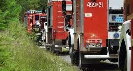 Pożar lasu - ćwiczenia straży pożarnej